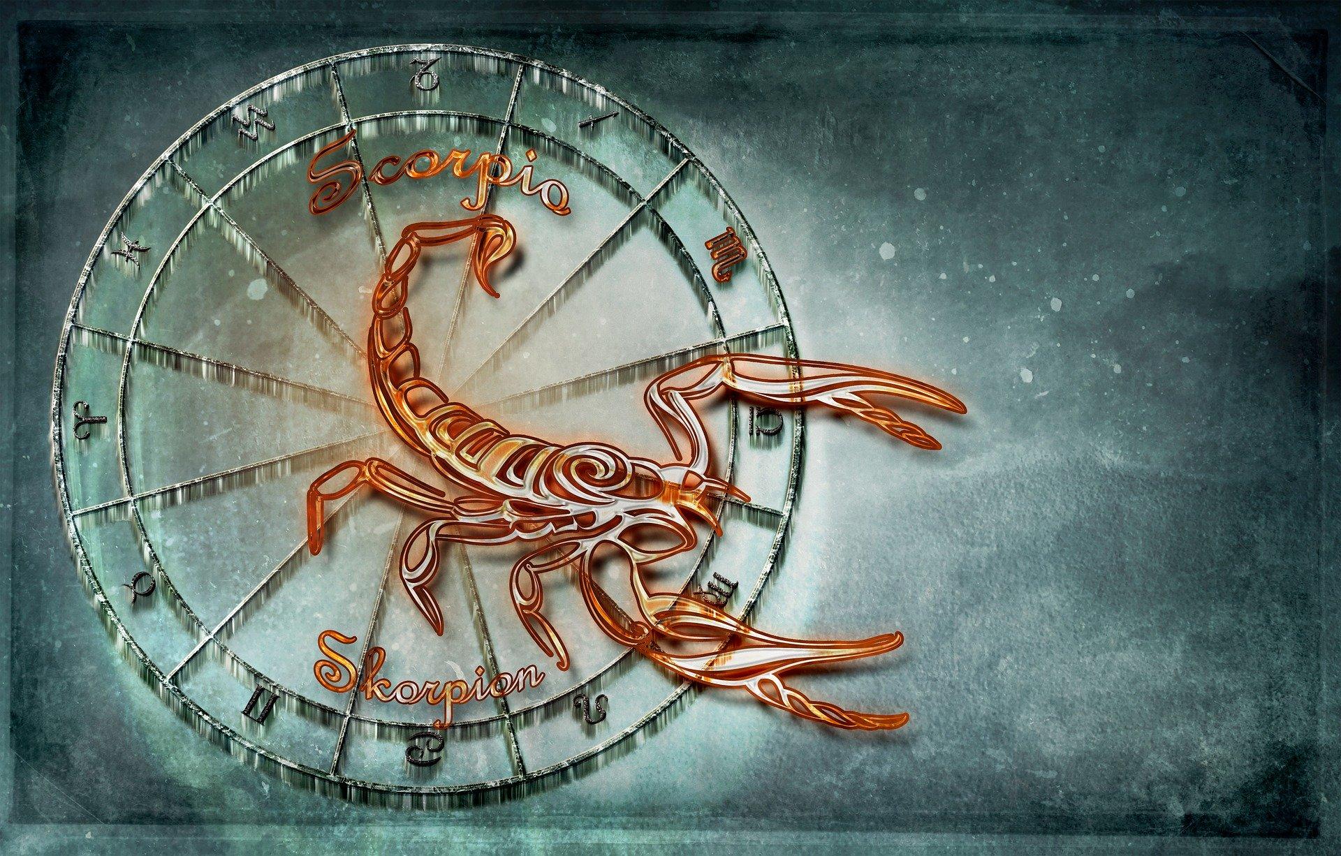 Scorpion zodia