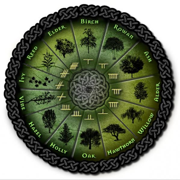 Zodiacul druidic Sursa: phenix.sergine.free.fr