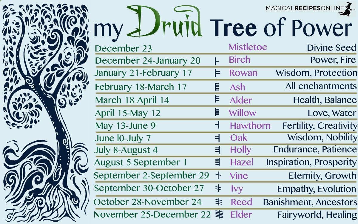 Zodiacul druidic