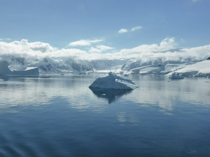 Interpretare vis in care apare Antarctica