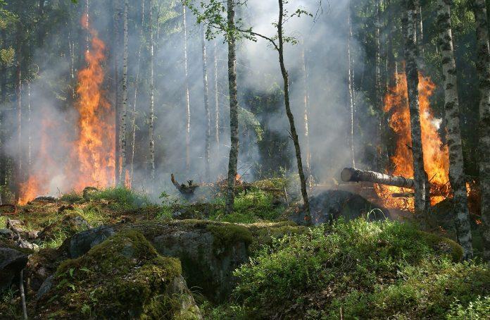 Interpretare vis in care apare incendiu