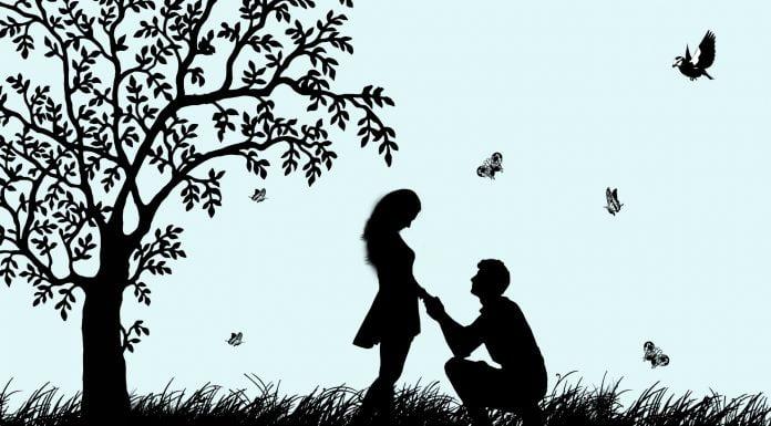 Interpretare vis in care apare o cerere in casatorie