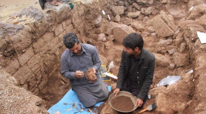 Interpretare vis in care apare un arheolog