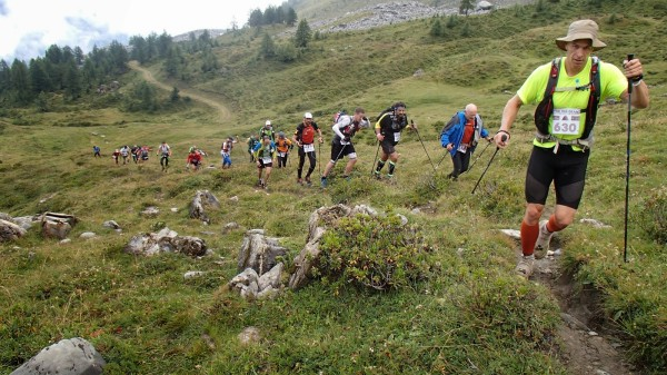 O cursa Sursa: chiurleas.blogspot.com