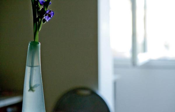 O eprubeta Sursa: insemnaridinbalconulcuflori.blogspot.com