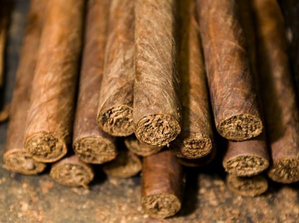 Tabac Sursa: enciclopedia-curiozitatilor.blogspot.com
