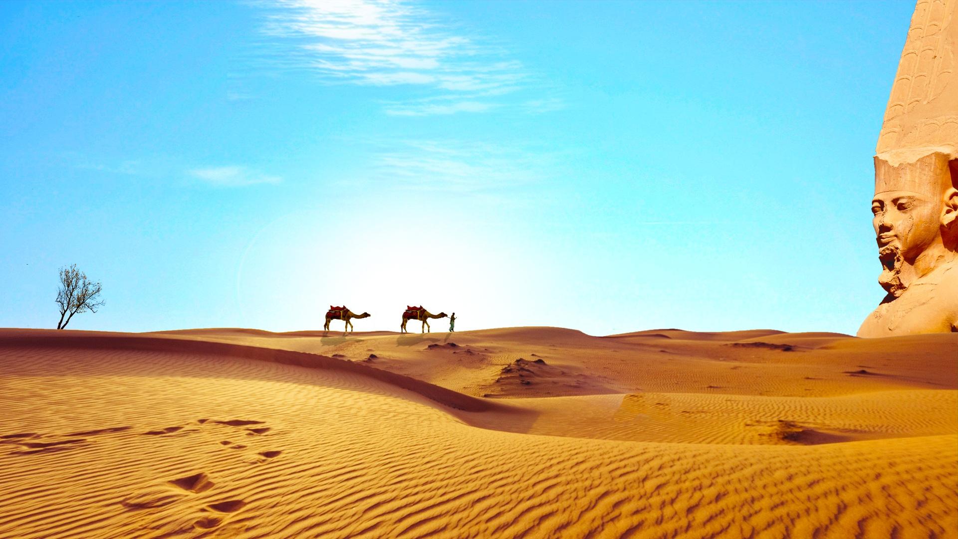 dune de nisip din Egipt