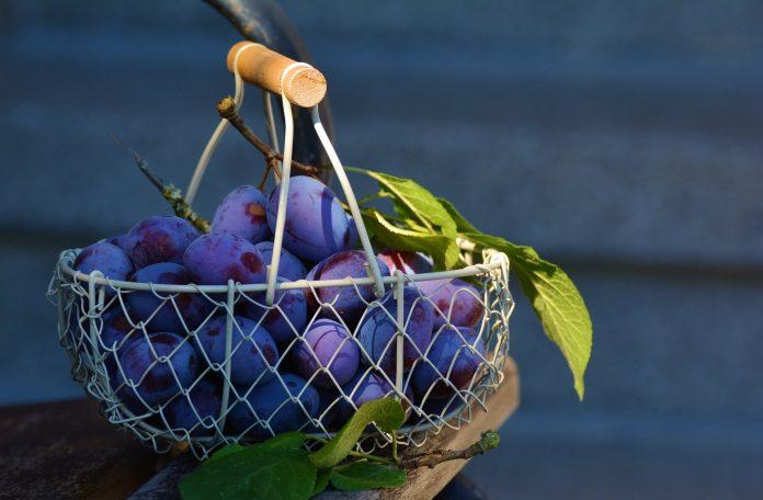 Interpretare vis in care apar prune