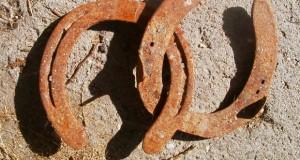 Potcoave, Foto: hunterjudgecanada.com