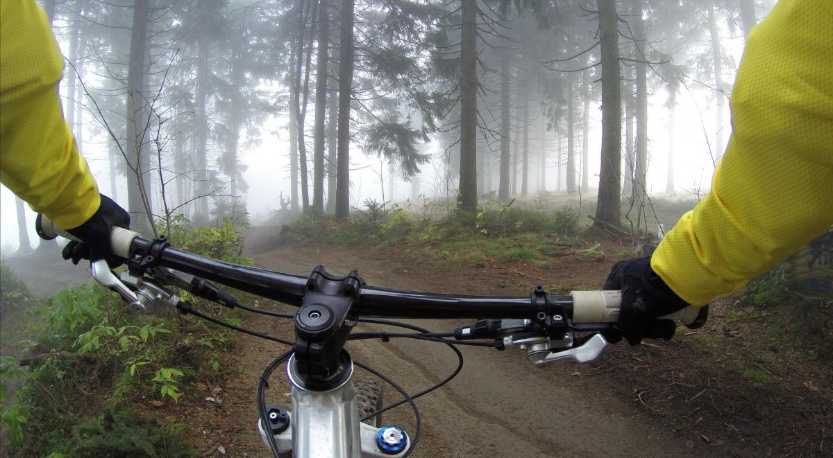 cu bicicleta in padure