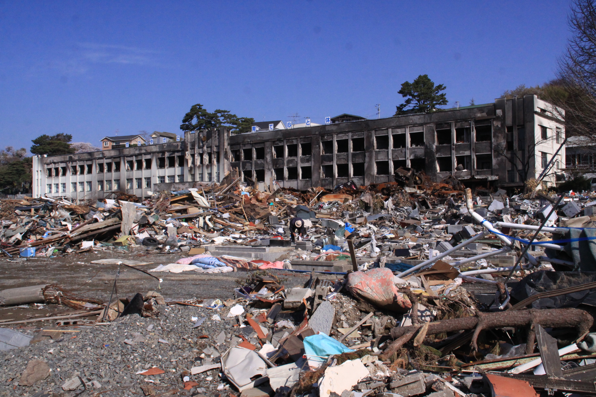 dupa tsunami