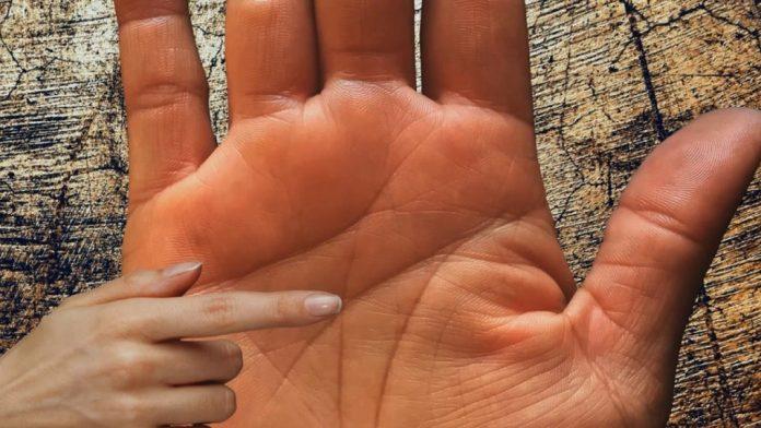 Ghicitul in palma (6)