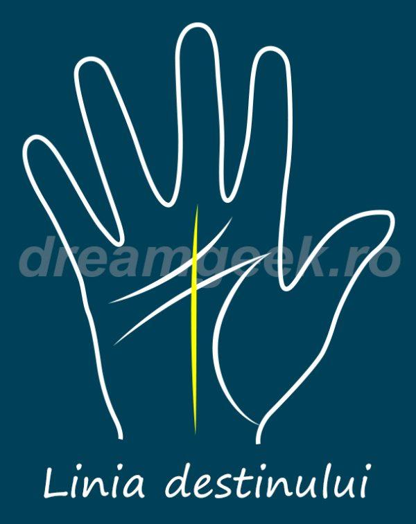Ghicitul in palma - Linia destinului