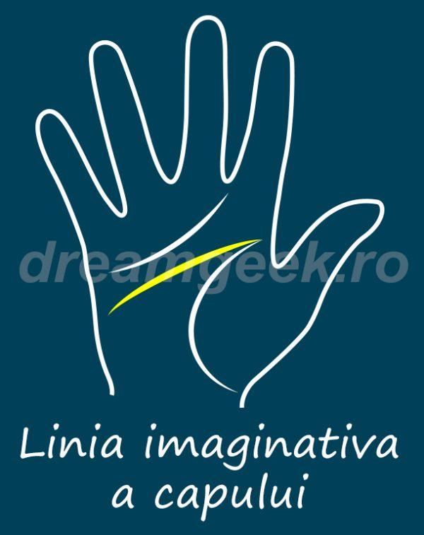 Ghicitul in palma - Linia imaginativa a capului