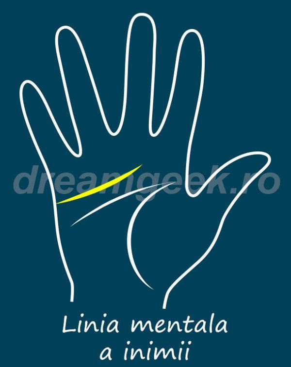Ghcitul in palma - Linia mentala a inimii