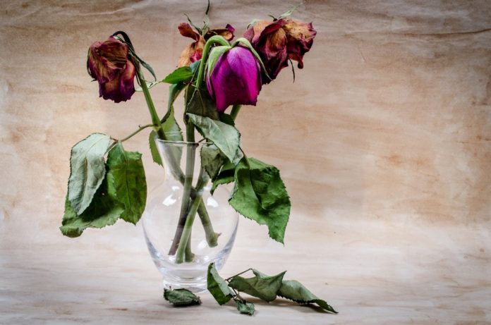 Interpretare vis in care se ofilesc flori