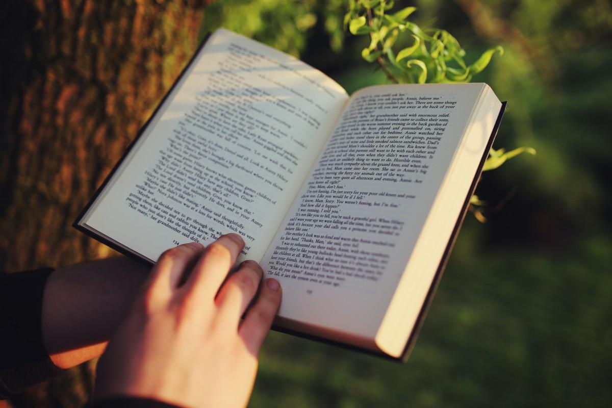 citesti o carte in parc la soare