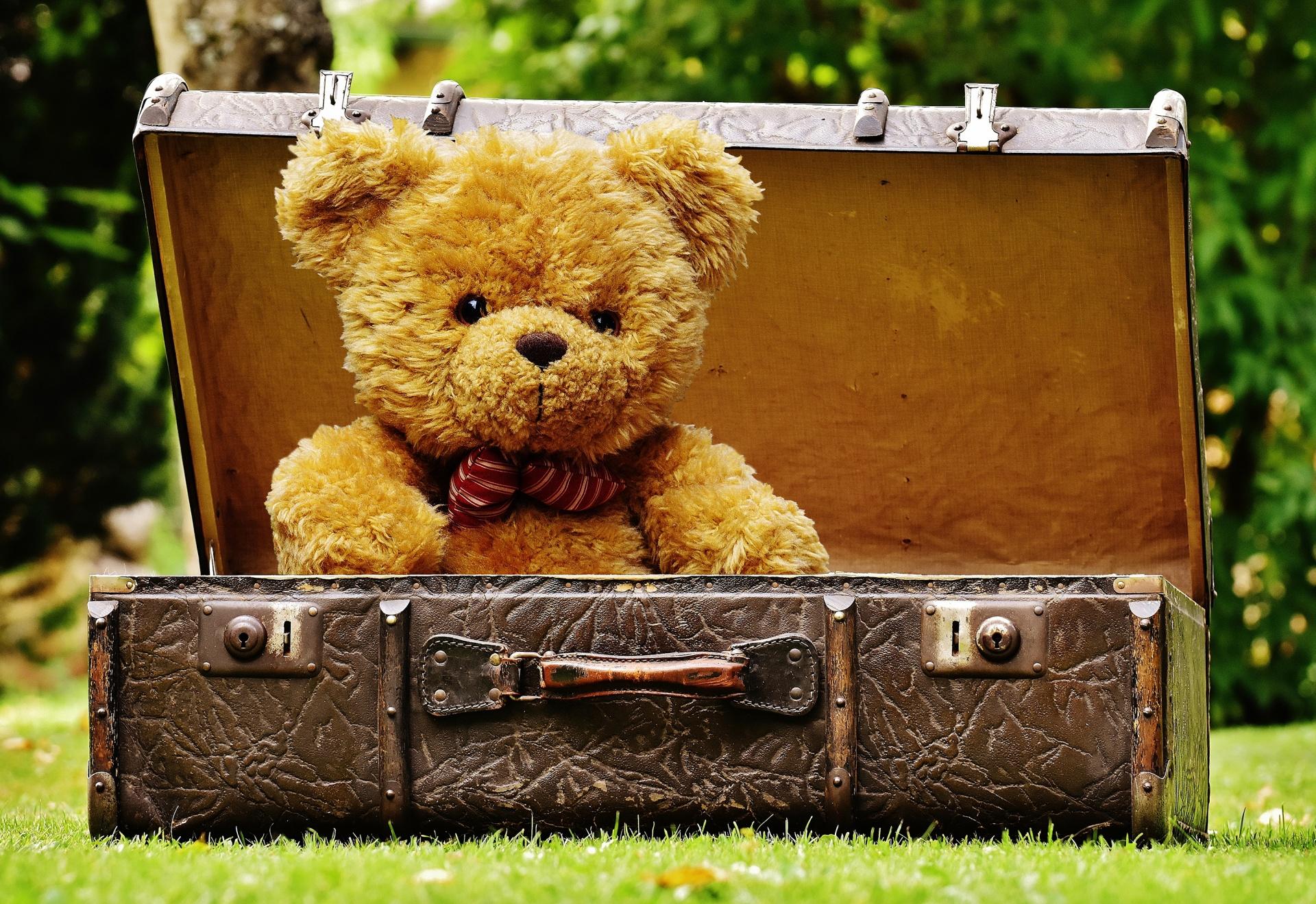 plecare de acasa cu valiza