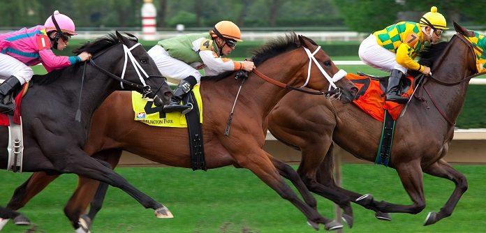 Interpretare vis în care apar curse de cai